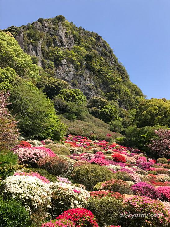 写真:御船山楽園 つつじ谷