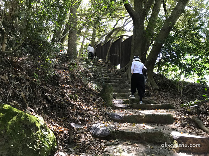 写真:御船山楽園 結構急な石段