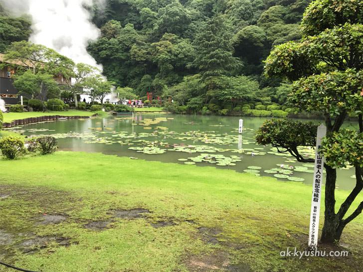 写真:大分別府 海地獄内の池
