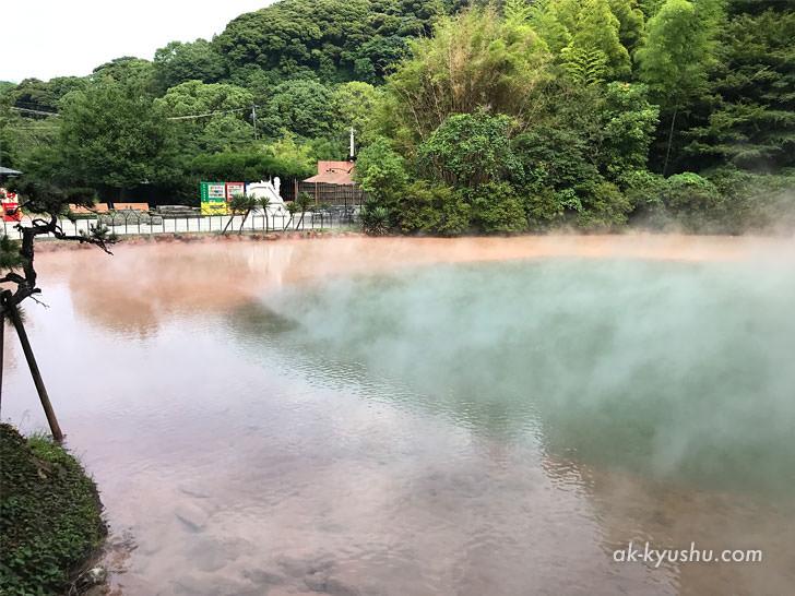 写真:大分別府 血の池地獄 逆サイドから見たところ青い部分がくっきり分かれている